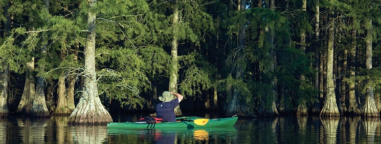 kayaker on the water