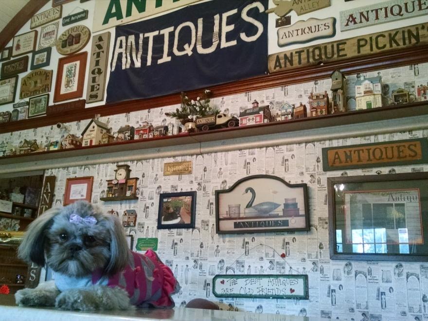 Antique Alley of Bridgeville llc